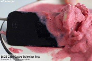 ESGE Gastro Stabmixer Fruchtsmoothie Ergebnis